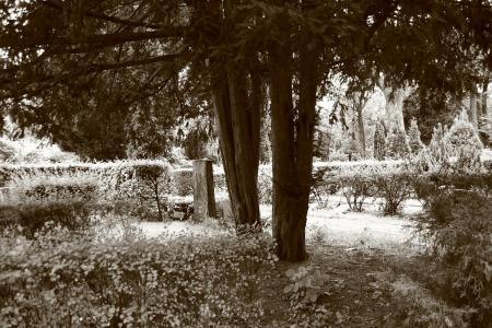 bild-092.jpg